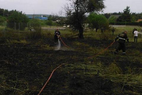 Πυρκαγιά εν υπαίθρω στο Λιοσάτι