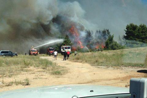Πυρκαγιά στο Κρυονέρι 6-7